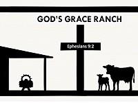 God's Grace Miniature Cattle Ranch